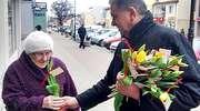Burmistrz z tulipanem na Dzień Kobiet