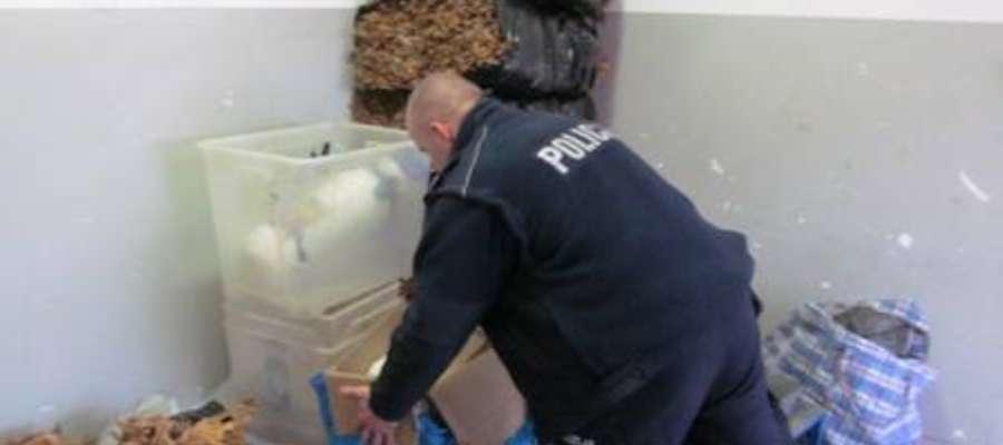 Policjanci zabezpieczyli ponad 150 kilogramów tytoniu