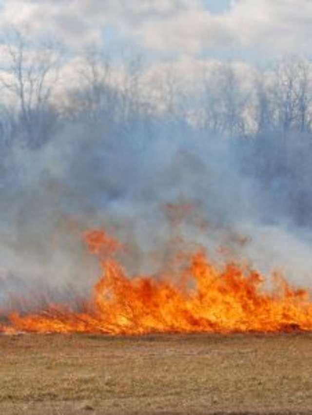 Wypalanie traw jest karalne, rolnicy mogą nawet z tego powodu stracić dopłaty bezpośrednie - full image