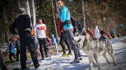 Jak aktywni rozpuszczają śniegi. Sprawdź, co będzie w weekend