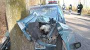 Tragiczny wypadek w Nowej Karczmie. Nie żyją dwie osoby