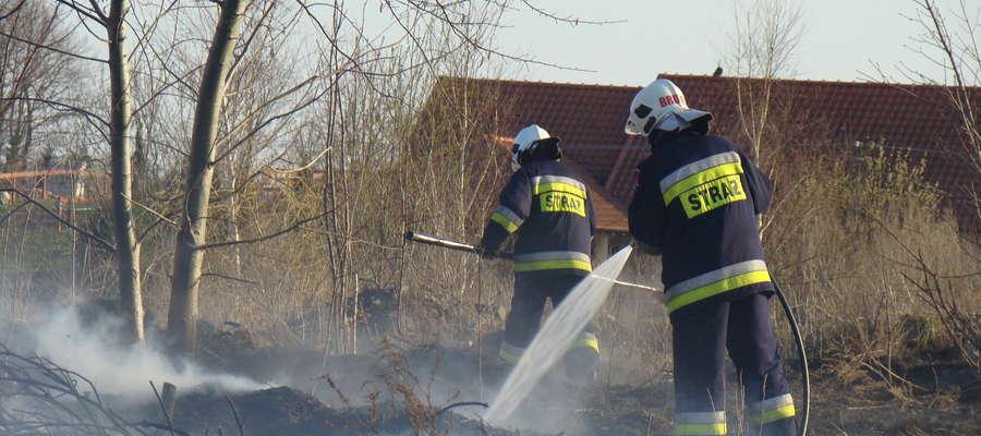 Strażacy OSP w Bisztynku ugasili pożar wypalanych traw przy ul. Grodzkiej.