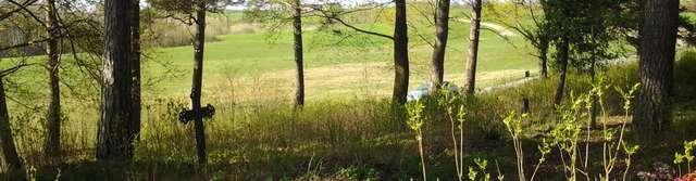 Upałty: cmentarz ewangelicki i groby z I wojny światowej - full image