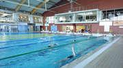 Jak najdalej na bezdechu, czyli basenowe mistrzostwa Polski w freedivingu