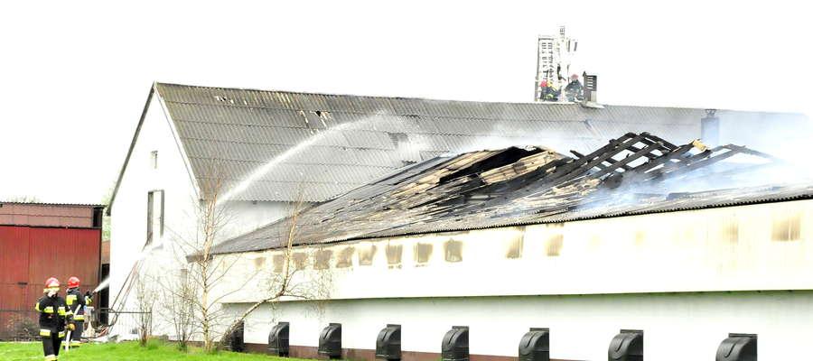Strażacy ratowali fragment budynku z sortownią jaj