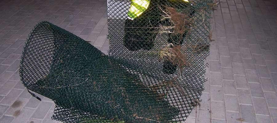 W czwartek, 23 maja, 35-latek próbował ukraść siatkę ogrodzeniową