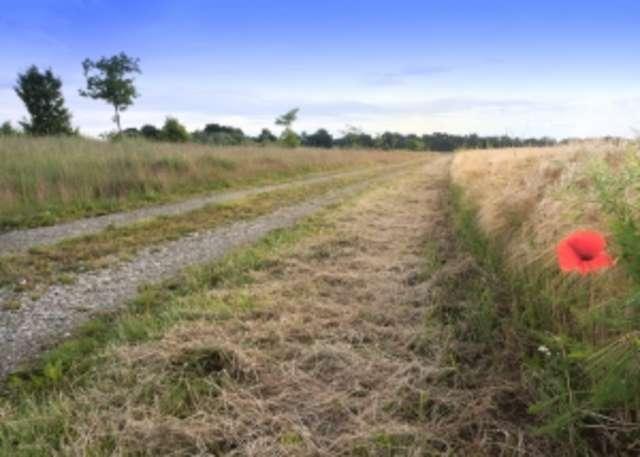 Prawie 3. mln na przebudowę drogi w gminie Zawidz - full image