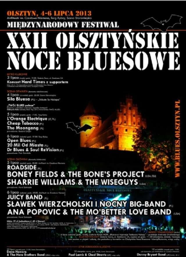 XXII Olsztyńskie Noce Bluesowe - full image