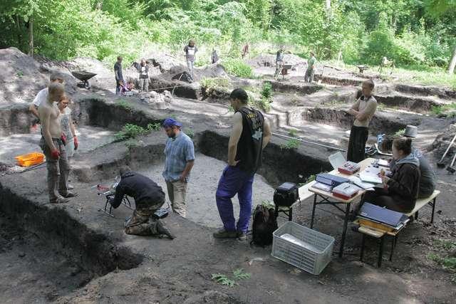 Archeolodzy podczas prac w olsztyńskim Lesie Miejskim - full image