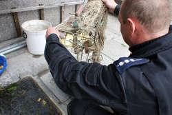 Policjanci zabezpieczyli sieci i ponad 10 kg złowionych ryb