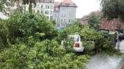 Drzewo runęło na samochód pod Wysoką Bramą w Olsztynie