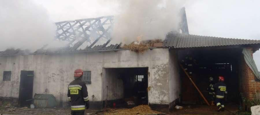 Łącznie na miejsce pożaru przybyło siedem pojazdów ratowniczo–gaśniczych straży pożarnej