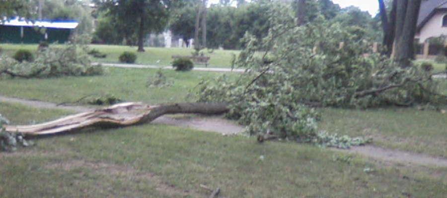 Zniszczenia, których dokonała trąba powietrzna w parku przu ul. Kościuszki w Nowej Wsi Ełckiej