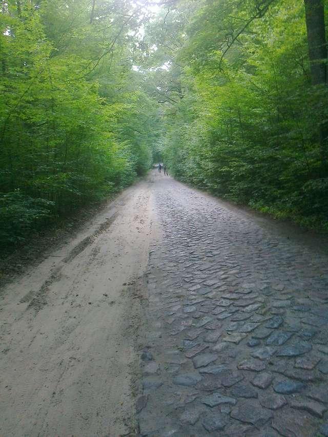 Droga Stare Jabłonki-Tomaszyn, Około 1-2 kilometrów za Starymi jabłonkami.