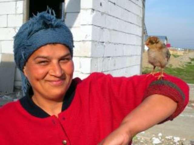 Ruszył konkurs na najaktywniejszą liderkę obszarów wiejskich  - full image
