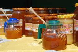 O pszczołach i o miodzie w skansenie