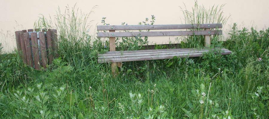 Takie zdjęcie z placu zabaw ze wsi Dmusy przesłała do nas mieszkanka Dmus