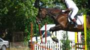 Stajnia Piruet w Gródkach zaprasza na zawody w skokach przez przeszkody