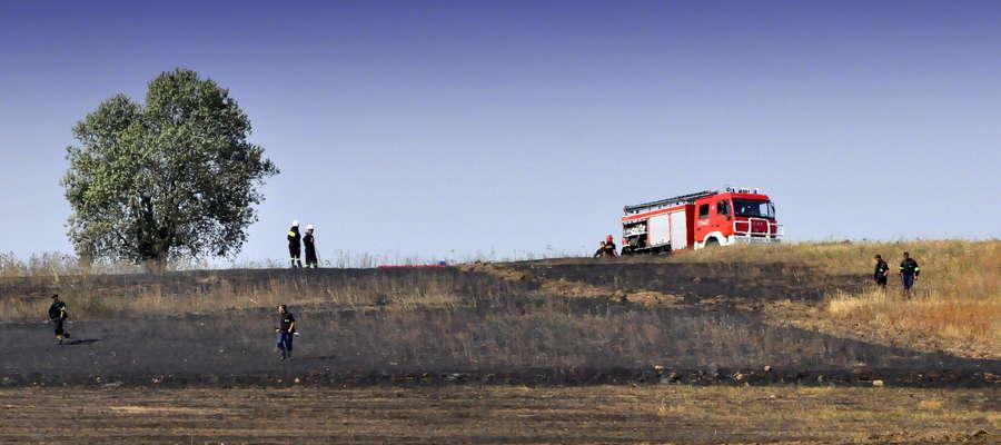 89 strażaków ratowało mienie podczas pożaru słomy
