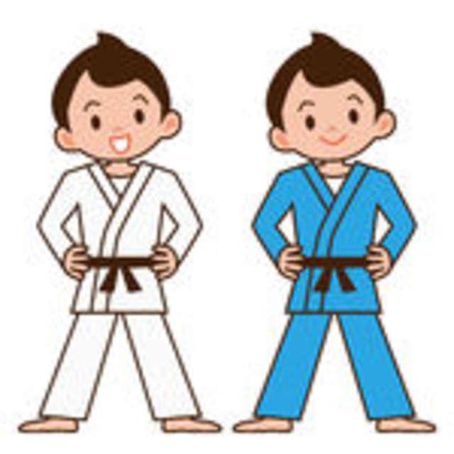 Zapisy do sekcji judo - full image