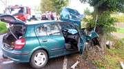 Nissan uderzył w drzewo. Jedna osoba ranna