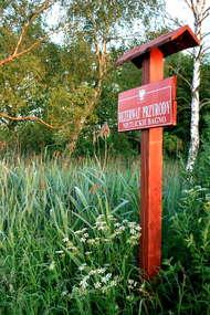 Rezerwat przyrody Nietlickie Bagno
