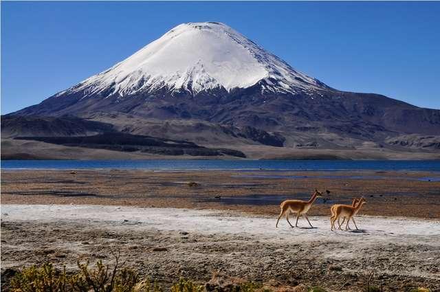 Prowincja Parinacota z malowniczym wulkanem - full image