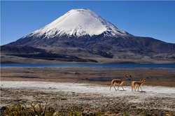 Prowincja Parinacota z malowniczym wulkanem