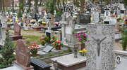 Na cmentarz najlepiej idź pieszo