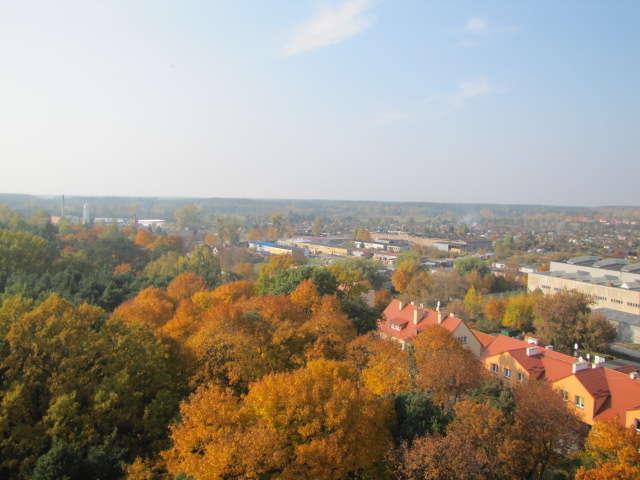 Ze szczytu wieży rozciąga się widok na Pisz i okolice - full image