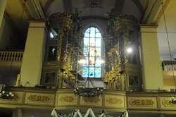 Organy Hildebrandta