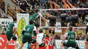 Indykpol AZS gra o półfinał Pucharu Polski