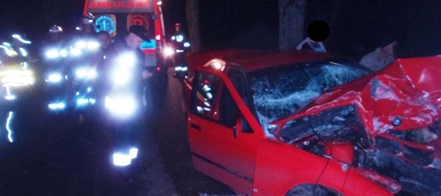 Auto po uderzeniu w drzewo zablokowało jeden pas drogi.  Kierowca został przewieziony do szpitala przez zespół ratownictwa medycznego z Pieniężna