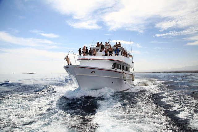 Takimi jachtami wywieźli nas w morze - full image
