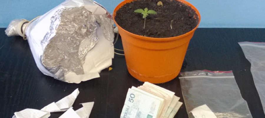 Do policyjnego depozytu trafiły m.in. doniczki z hodowanymi roślinami oraz tysiąc złotych pochodzące ze sprzedaży narkotyków