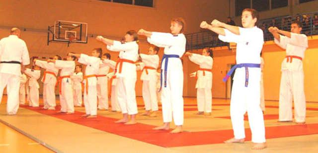 Egzamin brokowskich karateków - full image