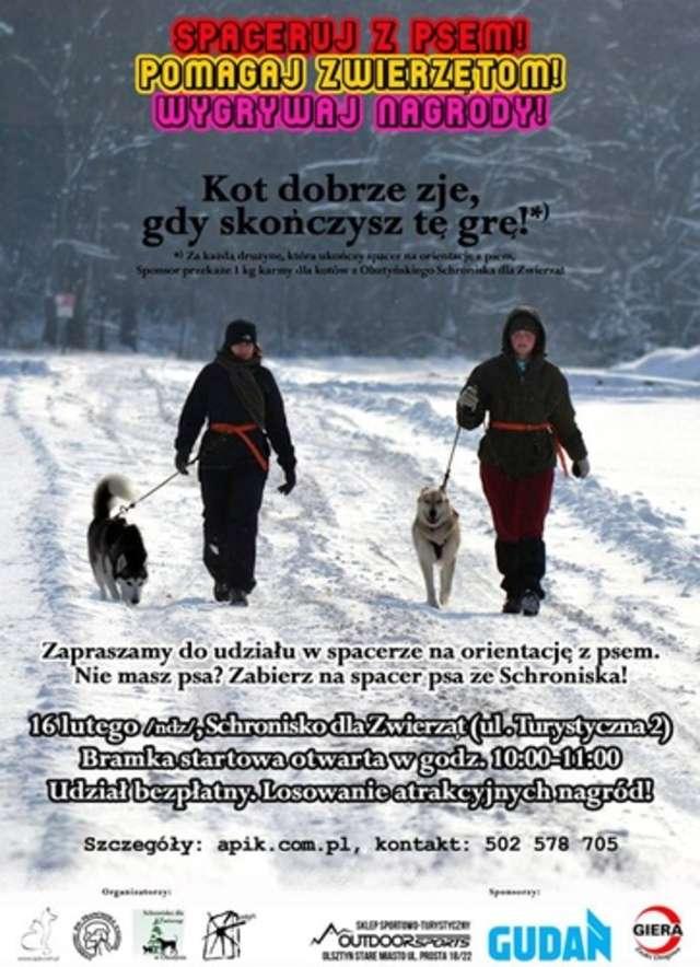 Spaceruj z psem, pomagaj zwierzakom! - full image
