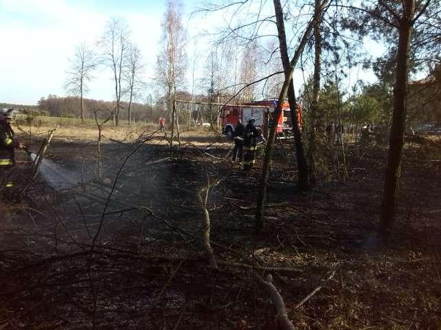 Żebry Laskowiec. Ugasili dwa pożary - full image