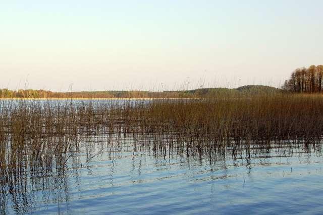 Rezerwat Przyrody Jezioro Pogubie Wielkie - full image
