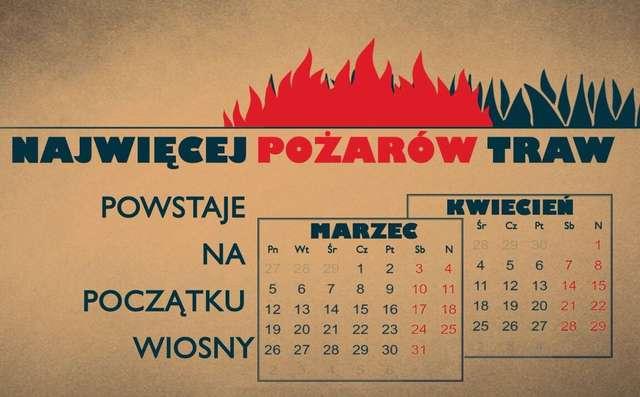 Już ponad 1000 pożarów traw na Mazowszu w tym roku - full image