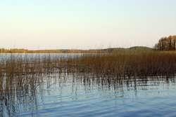 Rezerwat Przyrody Jezioro Pogubie Wielkie