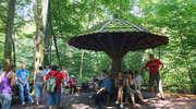 Bażantarnia - las, który wyrasta z miasta. To piękne zielone miejsce warto promować