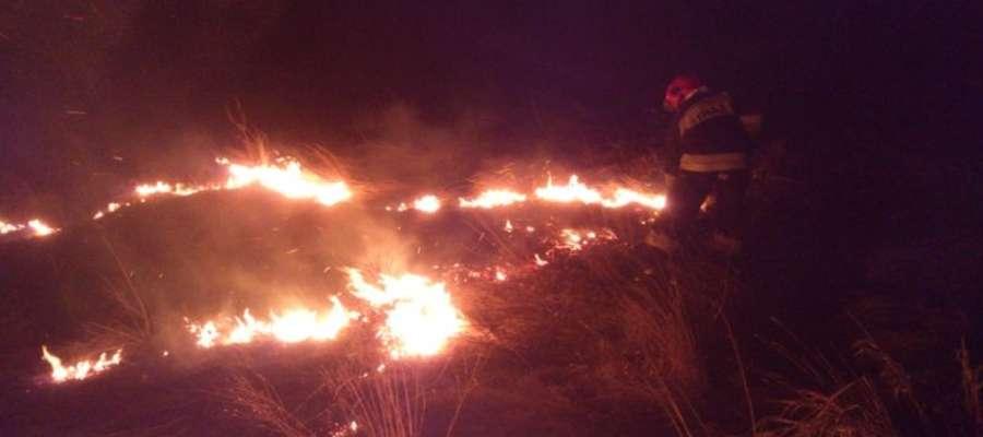 Gaszenie palącej się trawy w miejscowości Dzierżątnik