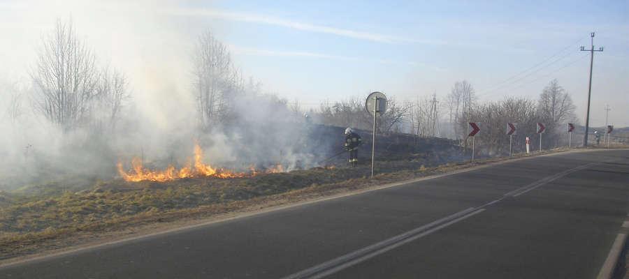 Pożar suchej trawy stwarzał zagrożenie dla kierowców podróżujących DK 57 w poblizu Bisztynka.