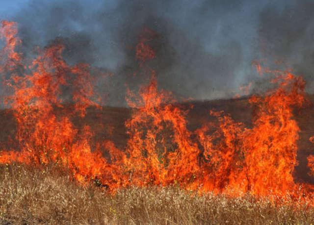 Nie dla wypalania traw, to akcja przeprowadzana każdego roku - full image