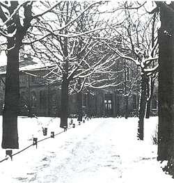 Droga dojazdowa do fabryki pędzli i szczotek T. Neumanna (ok. 1930)