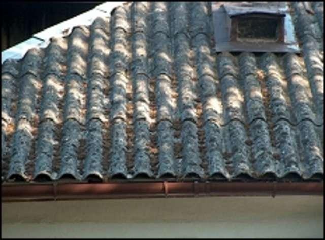 Gmina Ostrów Maz. Ponad 23 tysiące na usunięcie azbestu - full image