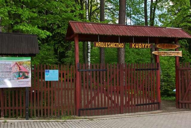 Arboretum w Kudypach - wiosna 2014 - full image