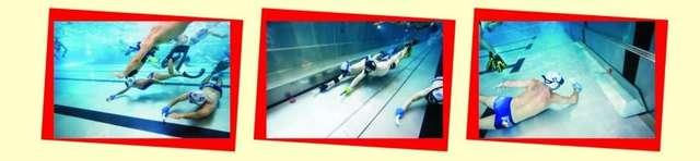 Hokej podwodny - Rozgwiazdy kontra Foki - full image