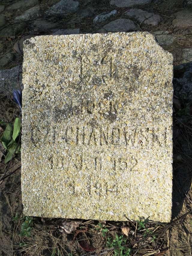Jeden z ocalałych płyt na cmentarzu w Szkotowie: Czechanowski - full image